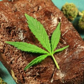 pot-brownies-1