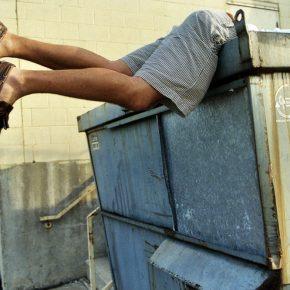 dumpster-diver_color