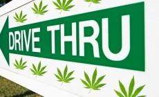 Weed Drive-Thru Hits Roadblock