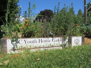 CSC Youth Garden