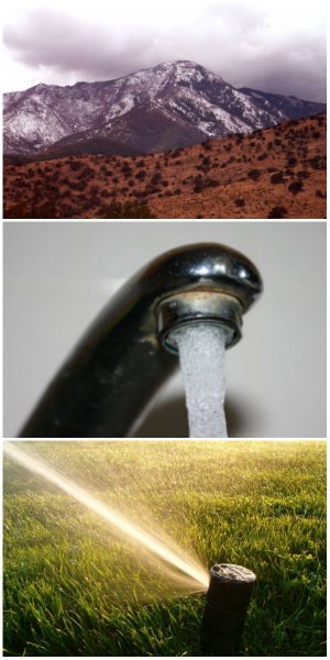 droughtcollage