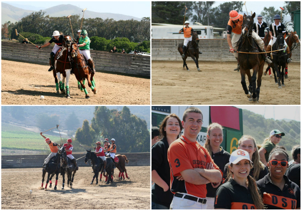 PoloCollage