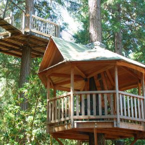 Tree House Boom Move Over Tiny Homes The Corvallis Advocate