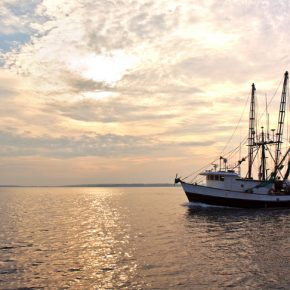 commercial-fishing-boat
