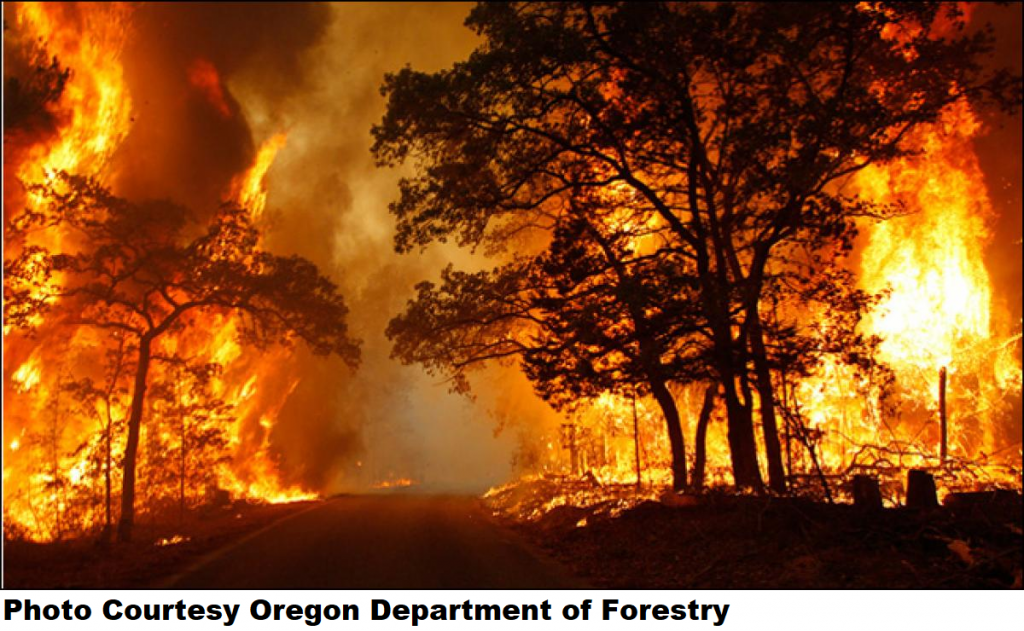 OR governor issues emergency declaration over wildfires